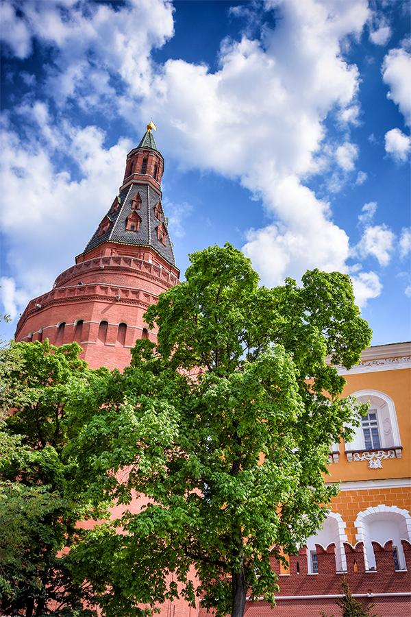 kremlin-tree