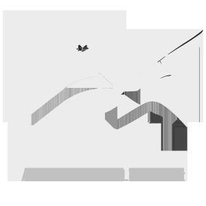 AdventureFlying Hang gliding